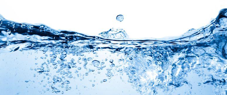 vandens skaitliukai